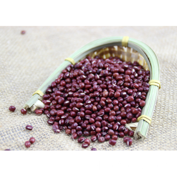 Small Red Bean Nutritional