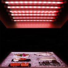 25000h Lifetime LED Tube for Fish with Color Box Packed