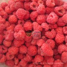 2015 New Crop IQF Frozen Raspberry