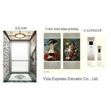 Unique and Luxury Decoration Home Elevator