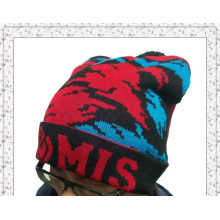 Wholesale Winter Warm Knitted Beanie Hat with Customized Design (1-3582)