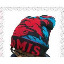 Оптовые зимние теплые трикотажные шапочка Hat с индивидуальным дизайном (1-3582)