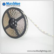 Disque de conduite concurrentiel Led China Manufacturer Flexible Smd 3528 Led Strip