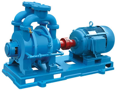 2BE water ring vacuum pump and compressor 1