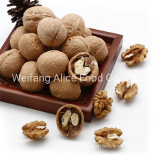 China Made Bulk Quality 28mm/30mm/32mm up Walnut in Shell Xinjiang Walnut