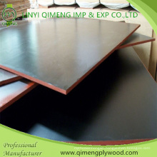 Professional Exporting Construction Grade Black Color 12mm Film Faced Plywood