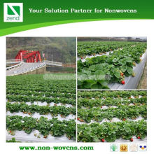 Biodegradable Plant Cover Agriculture Mulching Nonwoven Fabric