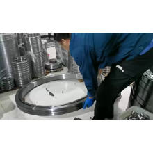 RB1250110UUCC0 OEM Supplier sealed types with cage crossed roller bearing