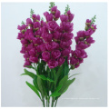The Hyacinth Violet Flowers Cheap Simulation