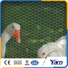 Chicken coop designs, Hexagonal wire mesh