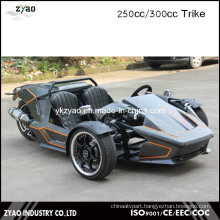 300cc Ztr Trike Adult Tricycle 24HP Trike Roadster 3 Wheel Car for Sale