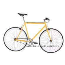 Bicicleta fija del engranaje
