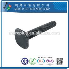 Fabricante en Taiwán de alta calidad de acero inoxidable T cabeza forma pernos