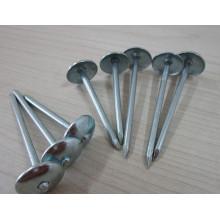 umbrella roofing nails