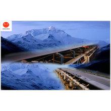 Hot Sale of Rubber Belt of Cold Resistant Conveyor Belt Hg-T3647-1999
