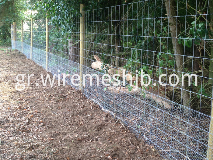 Deer Fence Wire