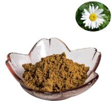 hot sale pure natural pyrethrum extract 10:1pyrethrum cinerariifolium powder for insecticide