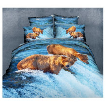 Disperse Screen Printed Fabric Bedsheets