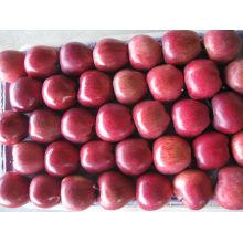 Maçã chinesa fruta fresca apple huniu