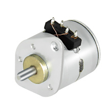 10BY25-001 Permanent Magnet Stepper Motor - MAINTEX