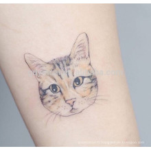 Motifs de chat de conception fine imperméable autocollant de tatouage