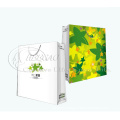 2013 Customized Gift Shopping Paper Bag (KG-PB071)