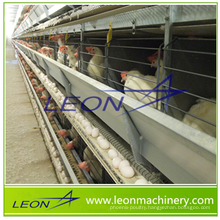 Leon series layer egg chicken cage/cage poultry farm house design
