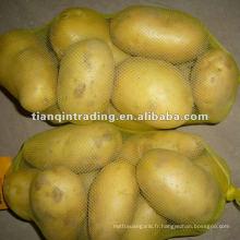 prix de la pomme de terre fraîche