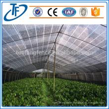 Flexible Windbreak Netting/Plastic Windbreak Net