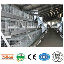 Poul-Tech Automatic Pullet Cage and Incubators for Poultry Farms