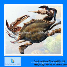 IQF frozen crab blue swimming crab
