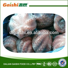 hot sales fresh small Octopus from china manufacturer