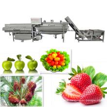 fruit washing machine Fruit washer Fruit machinery Commercial fruit processing machine