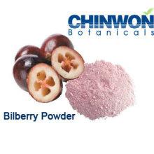 Fruit Powder Bilberry Powder