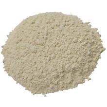 100-120 Mesh dehydriertes Knoblauchpulver