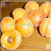 Fruta iqf