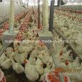 Автоматическое оборудование Цыплятины для управления заводчика