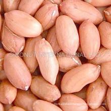 New Crop Large Peanut Kernel