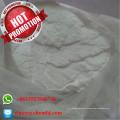 99% Cediranib (Recentin) Powder Azd2171 CAS 288383-20-0 Medicamentos antineoplásicos