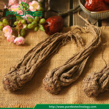 Kering Angelica Sinensis Root For Wholesales