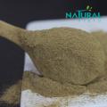 Herbal Extract 50% Bacoside Powder Bacopa Monnieri Extract