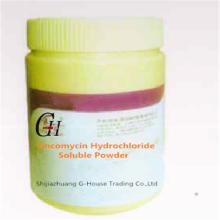 Lincomycin Hydrochloride Soluble Powder