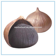Sementes de alho preto chinês, China Extrato de alho preto