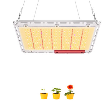 120 W de tela plana de planta quântica Led Grow Light
