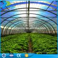 Serre en polycarbonate pour plantes Légumes-fleurs