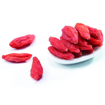 Ningxia New Dried Goji Berry certifié