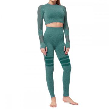 High Taist Gym Mesh Leggings Anzug
