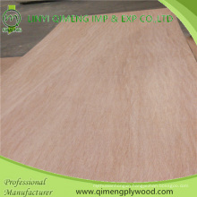 Poplar Core 4.2mm Bintangor Plywood From Linyi Qimeng