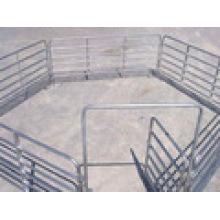 , Horse Panels / Schafplatten für Zaun