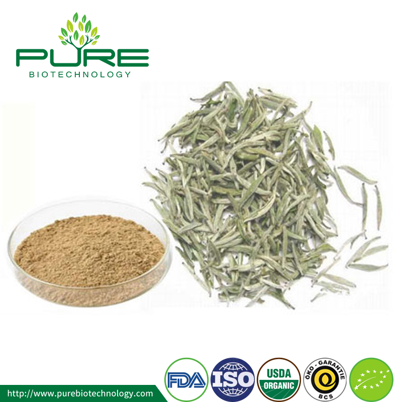 Organic white tea powder